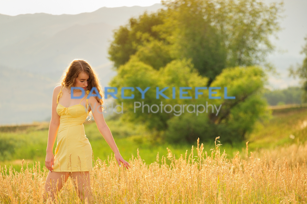 Niwot High Senior Portraits with Kiefel Photo